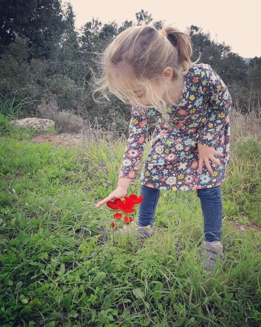ילדה מסתכלת על הפרחים