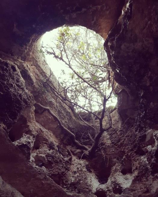 חורבת מדרס. מבט מתוך המערה