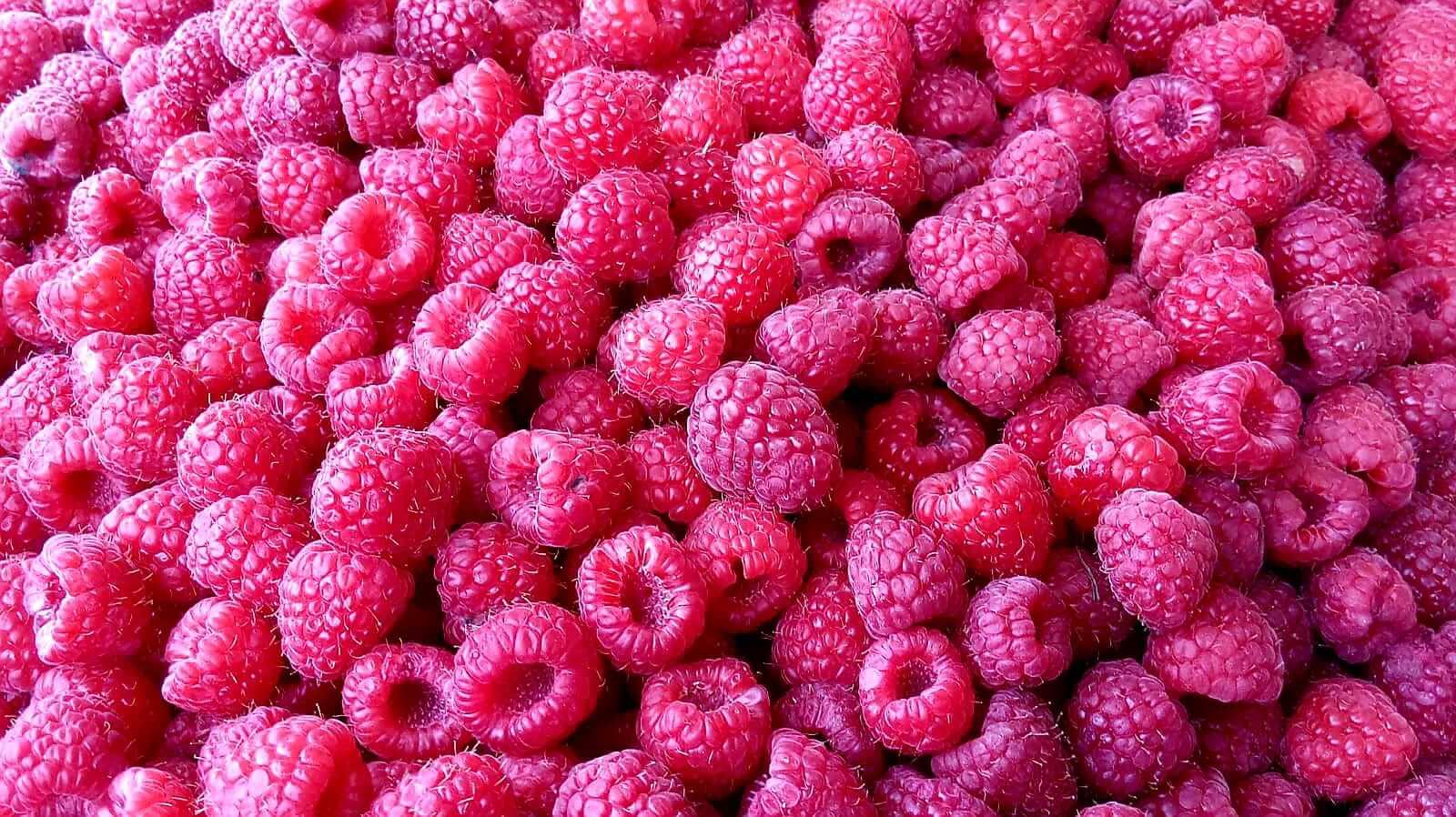 שוק אובור- פירות יער.jpeg