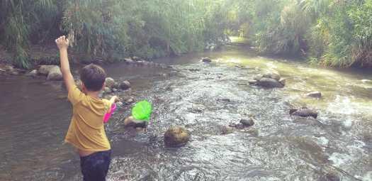 ילד נהנה במים של פארק הירדן