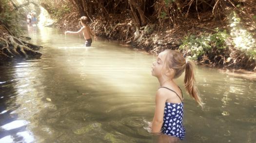 ילדים בתוך המים של שמורת המג'רסה