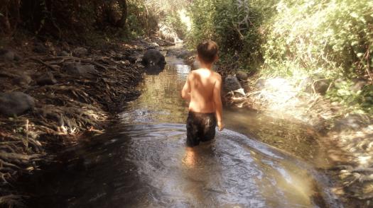ילד הולך בתוך המים של שמורת המג'רסה