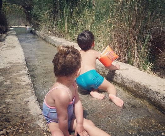 ילדים משתעשעים בתעלת מים שמובילה לבריכה- עין פשחה