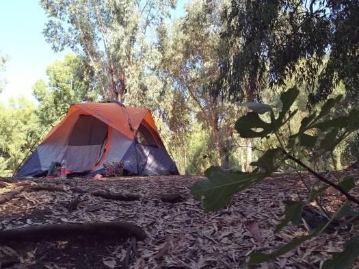 קמפינג באזור פארק הירדן