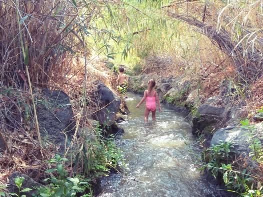 פארק הירדן- מסלול רטוב