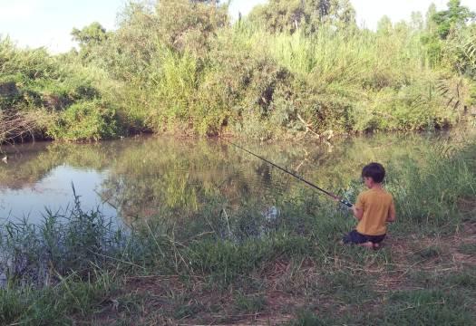 ילד דג בנהר הירדן
